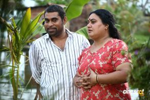 Pullipulikalum Aattinkuttiyum movie photos _11_